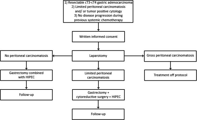 Jrp Treatment Of Peritoneal Dissemination In Stomach Cancer Patients With Cytoreductive Surgery And Hyperthermic Intraperitoneal Chemotherapy Hipec Rationale And Design Of The Periscope Study Van Der Kaaij Jmir Research Protocols